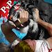 Download Life Of Black Tiger FREE APK